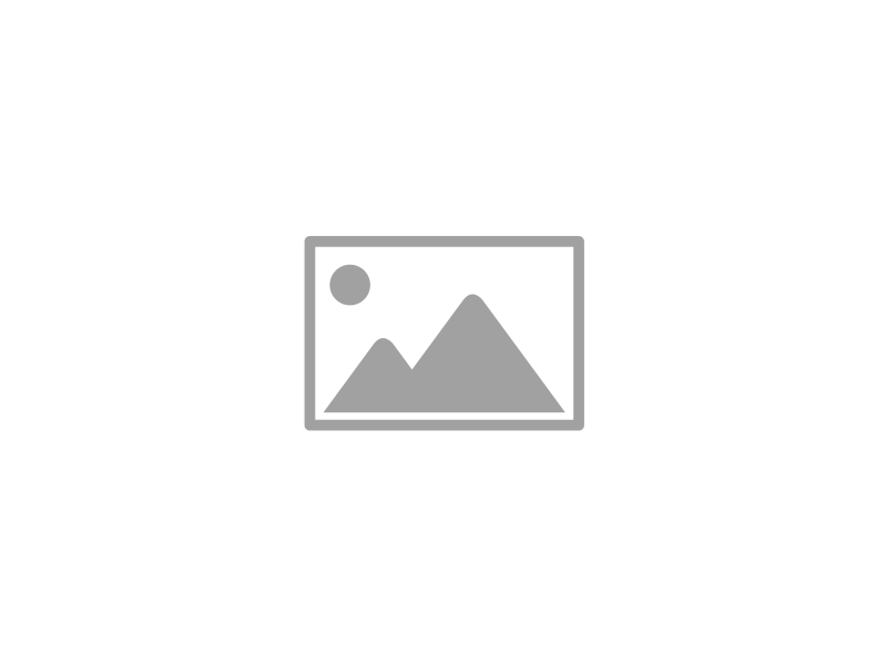 RSI2019-4
